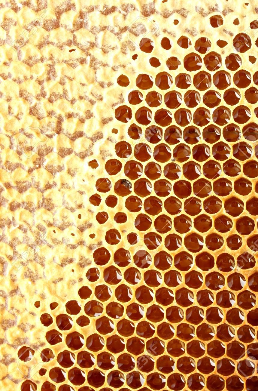 yellow beautiful honeycomb with honey, background Stock Photo - 14691146