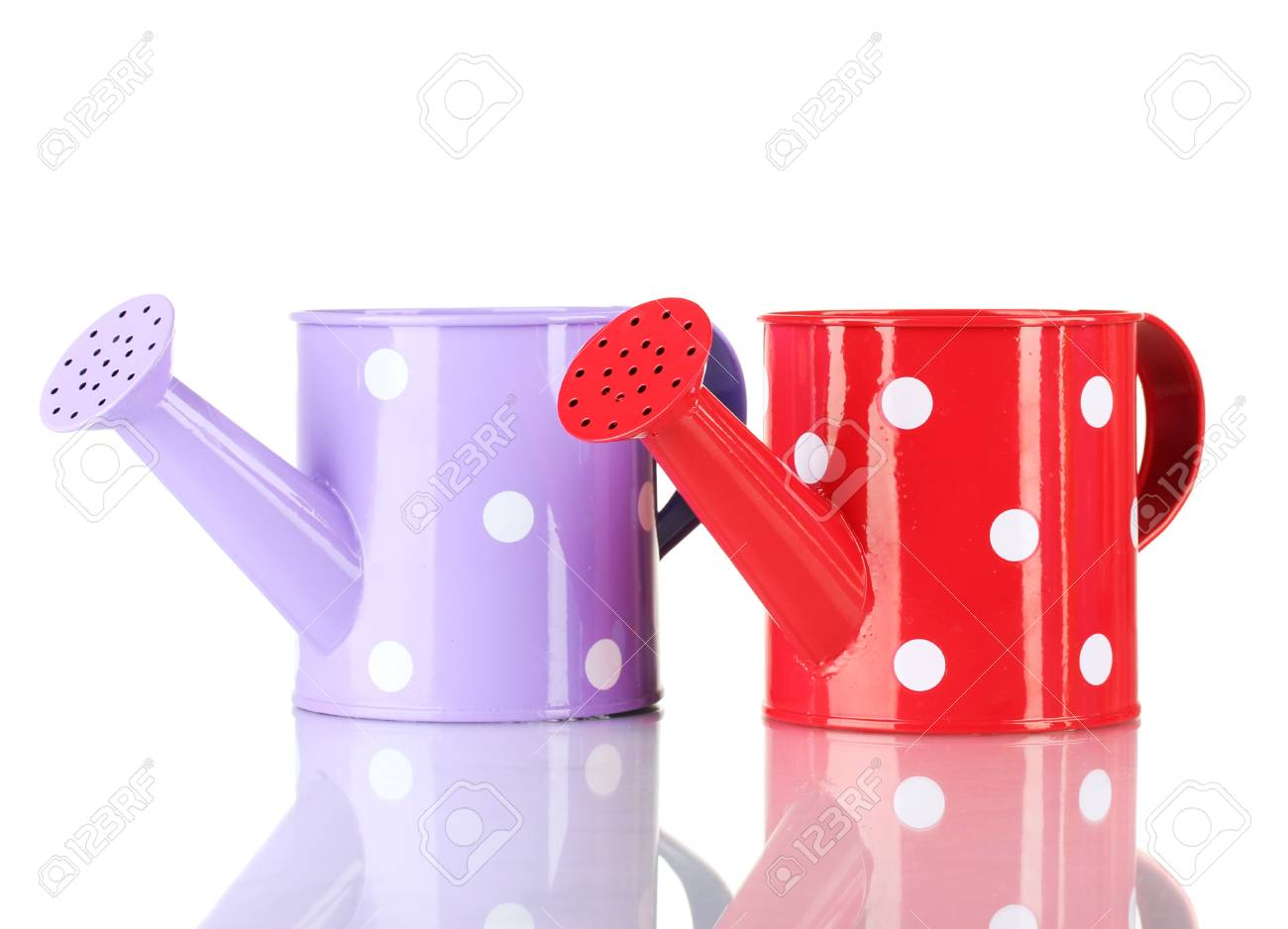 Purple and red watering cans with white polka-dot isolated on white Stock Photo - 14856922