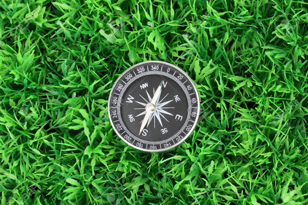 compass on green grass Stock Photo - 15505887