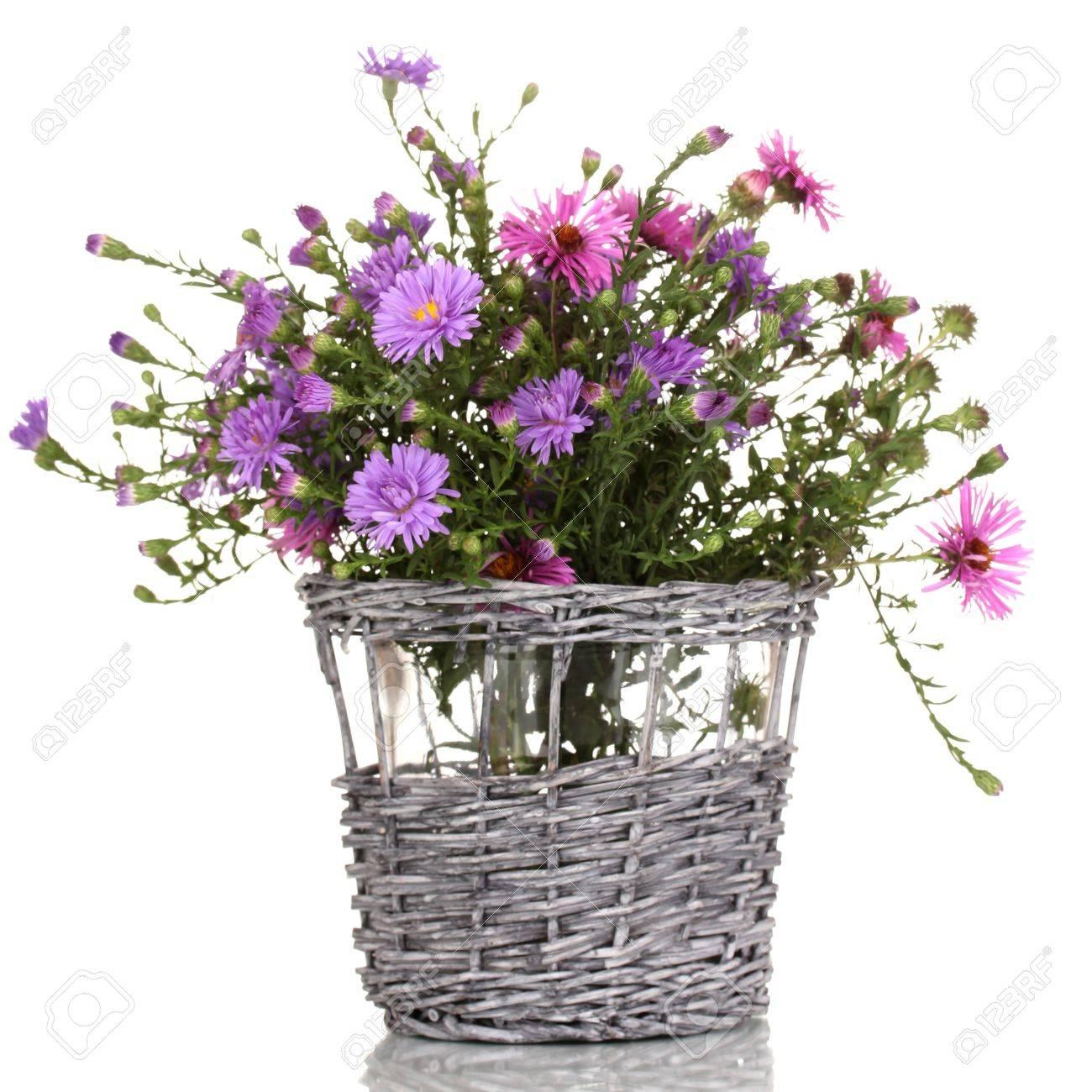 Beautiful bouquet of purple flowers in basket isolated on white beautiful bouquet of purple flowers in basket isolated on white stock photo 15419472 mightylinksfo