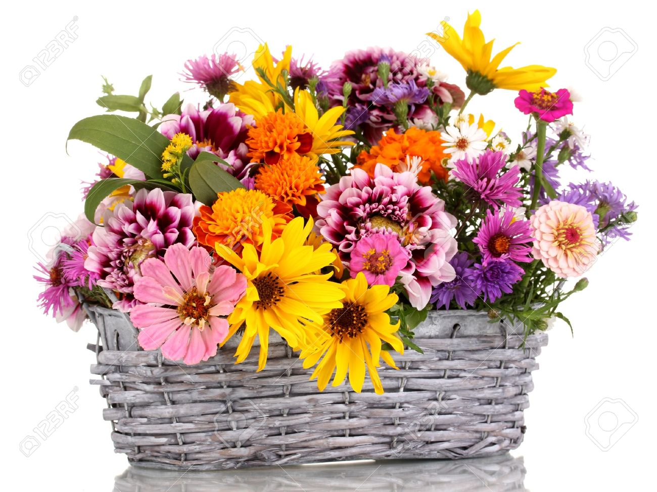 Beautiful Bouquet Of Bright Flowers In Basket Isolated On White Stock Photo
