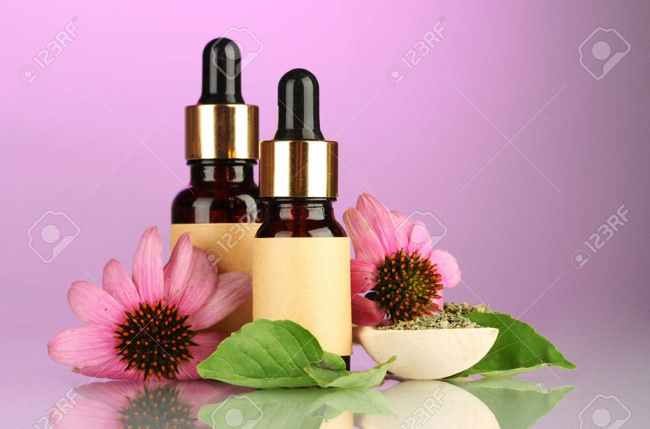 bottles with essence oil and purple echinacea, on pink background Stock Photo - 15994762