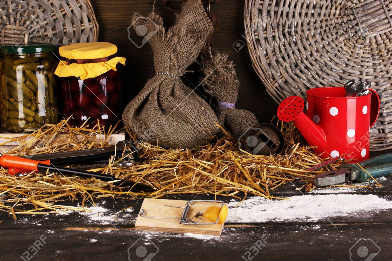 Mousetrap with a piece of cheese in barn on wooden background Stock Photo - 16295414