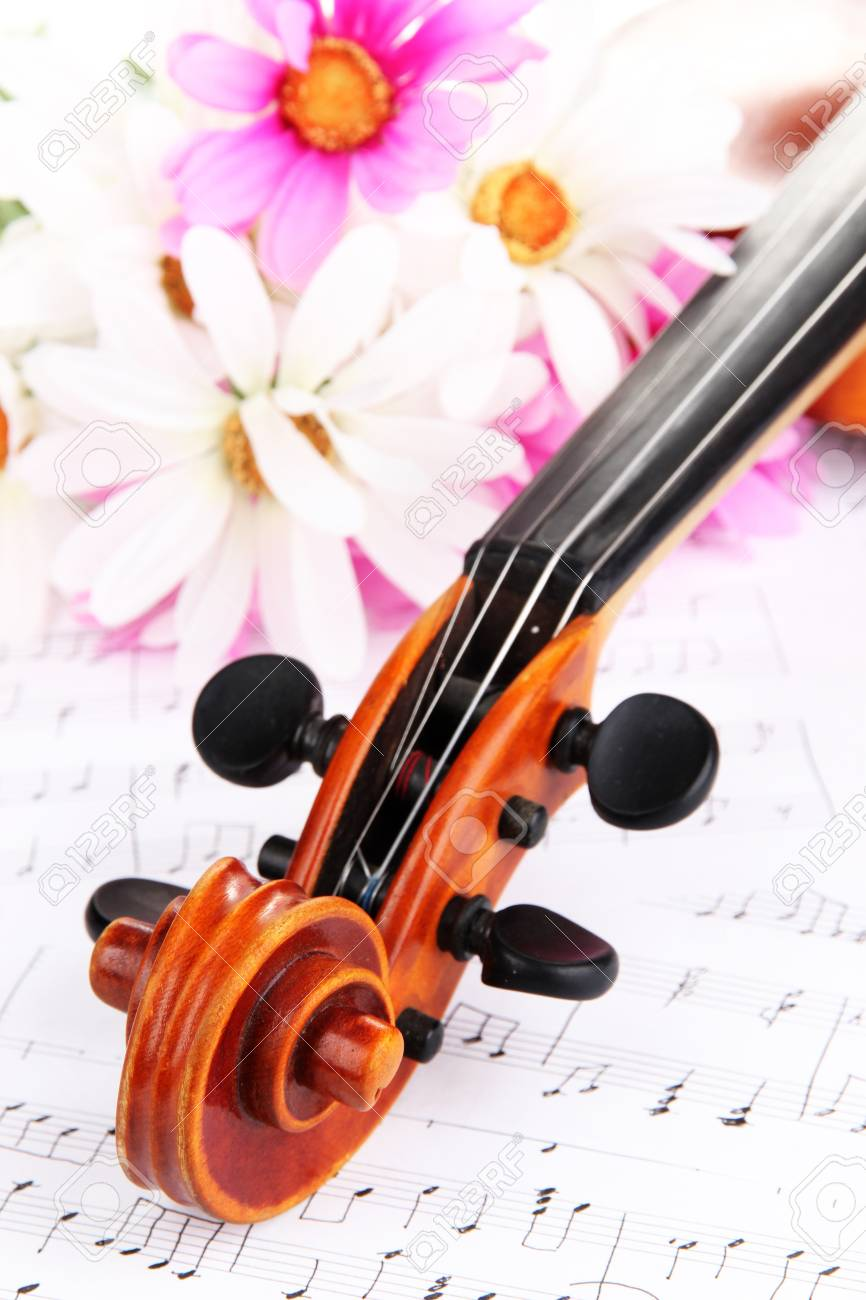 Classical violin  with flowers on notes Stock Photo - 19301336