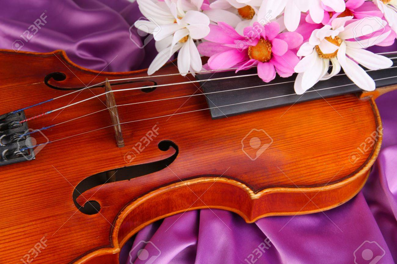 Classical violin on fabric background Stock Photo - 19303336