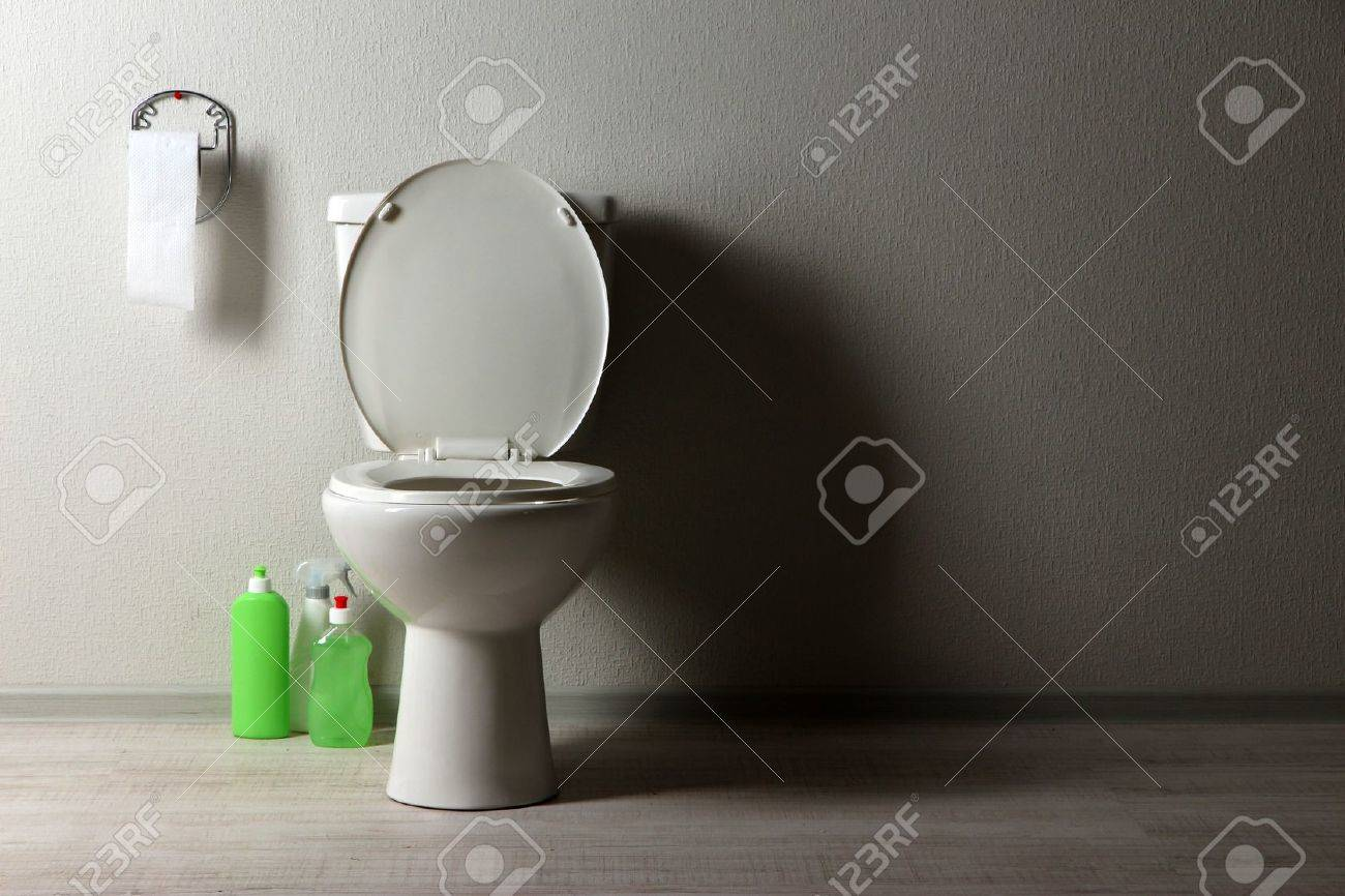 White toilet bowl and  cleaning supplies in a bathroom Stock Photo - 20126164