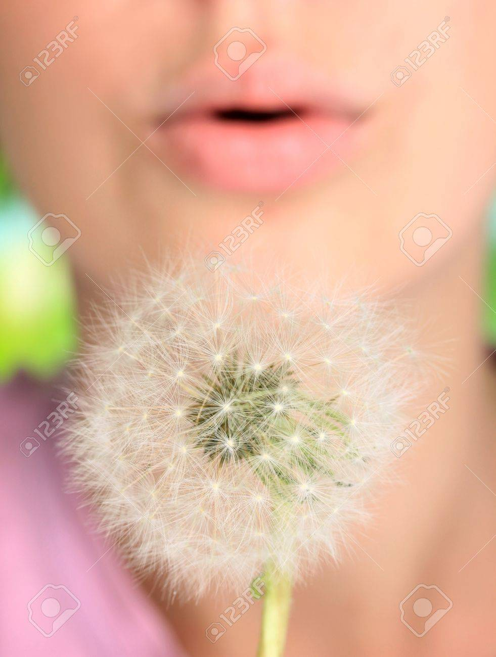 Girl blowing on dandelion close up Stock Photo - 20125021