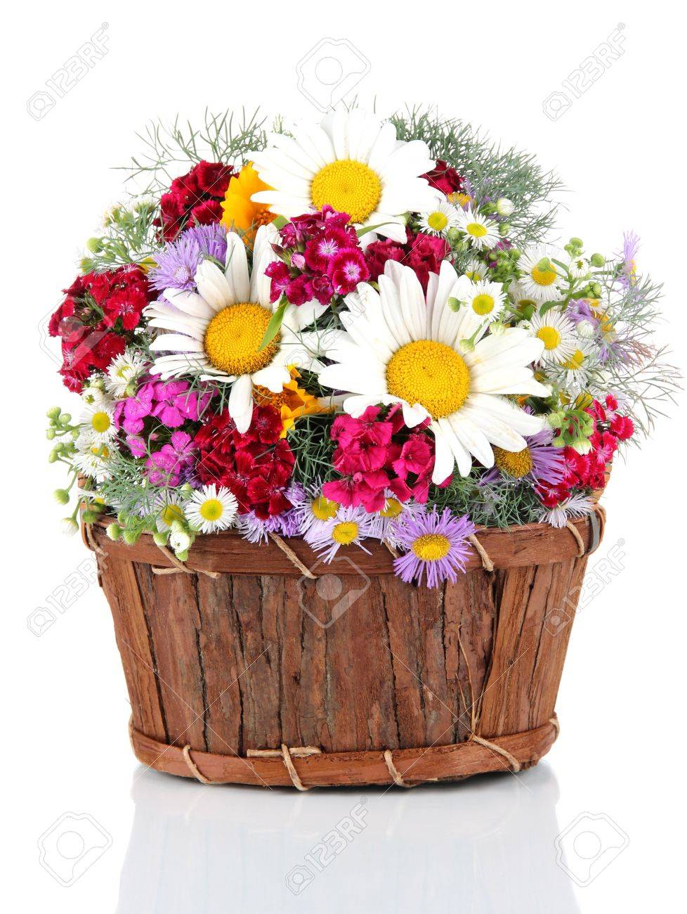 Beautiful Bright Flowers In Wooden Basket Isolated On White Stock