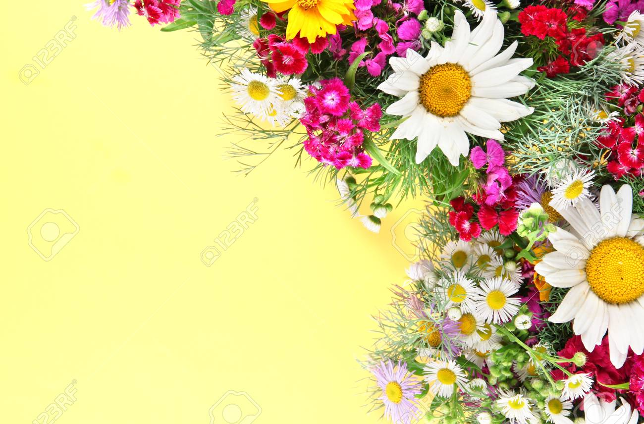 Beautiful Bright Flowers On Yellow Background Stock Photo Picture