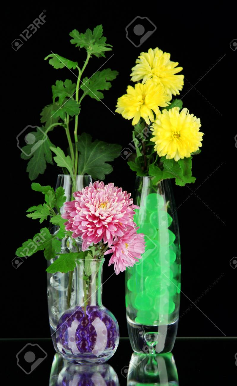 Beautiful flowers in vases with hydrogel isolated on black Stock Photo - 29142503  sc 1 st  123RF.com & Beautiful Flowers In Vases With Hydrogel Isolated On Black Stock ...