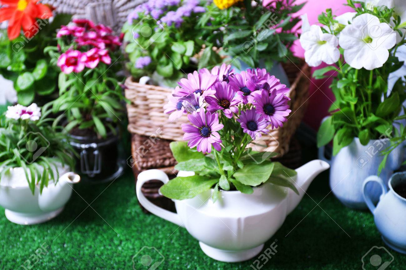Flowers In Decorative Pots And Garden Tools On Green Grass ...