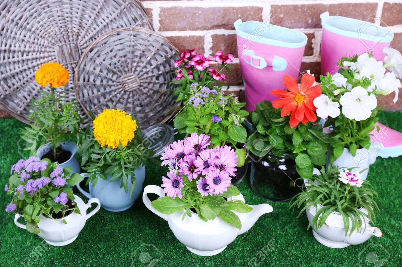 Flowers In Decorative Pots And Garden Tools On Green Grass,.. Stock ...