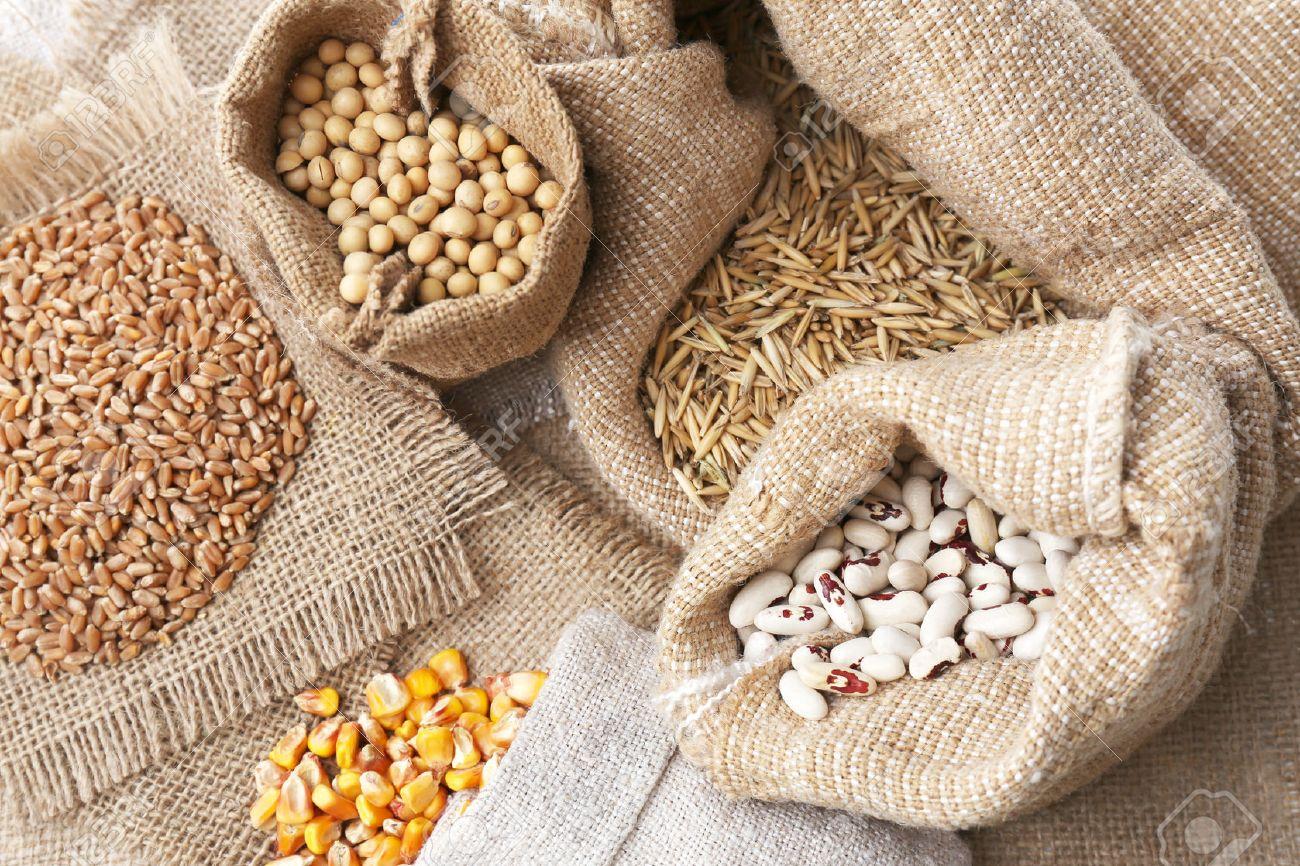 Cereals in sacks - 29675242