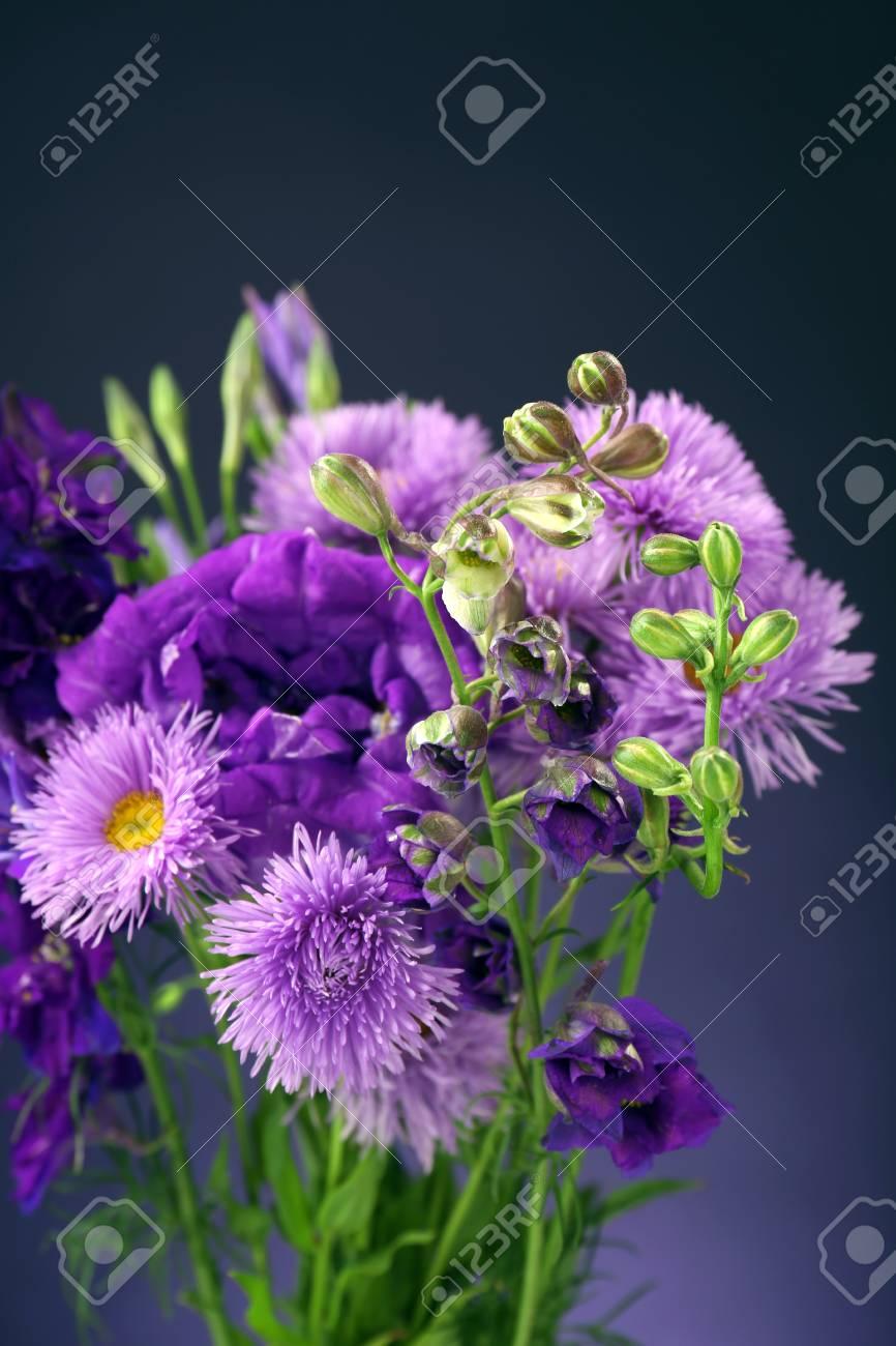 Beautiful wild flowers on dark blue background stock photo picture beautiful wild flowers on dark blue background stock photo 29675778 izmirmasajfo