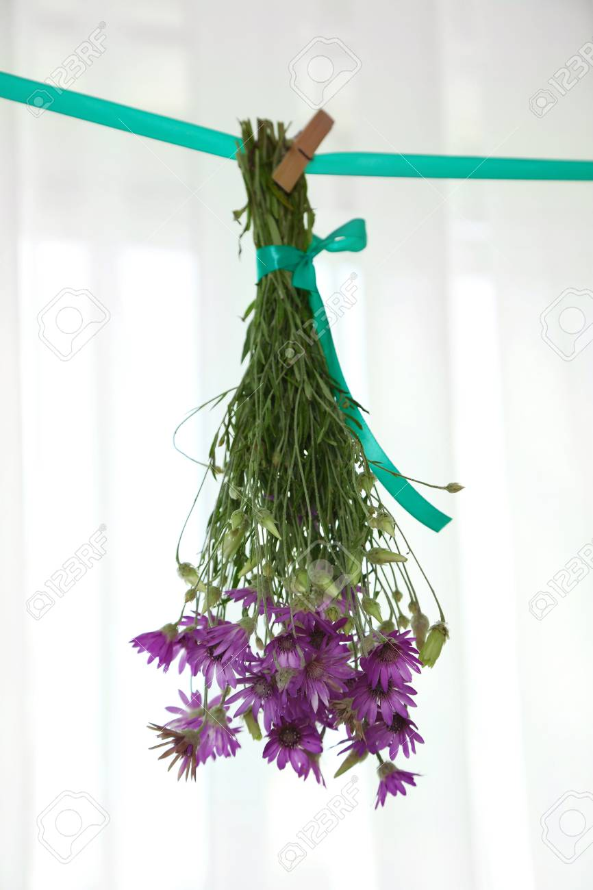 Bouquet of wild flowers drying on thong on light background stock bouquet of wild flowers drying on thong on light background stock photo 102138227 izmirmasajfo
