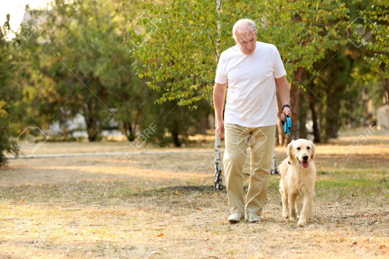 Senior man and big dog walking in park - 109418699