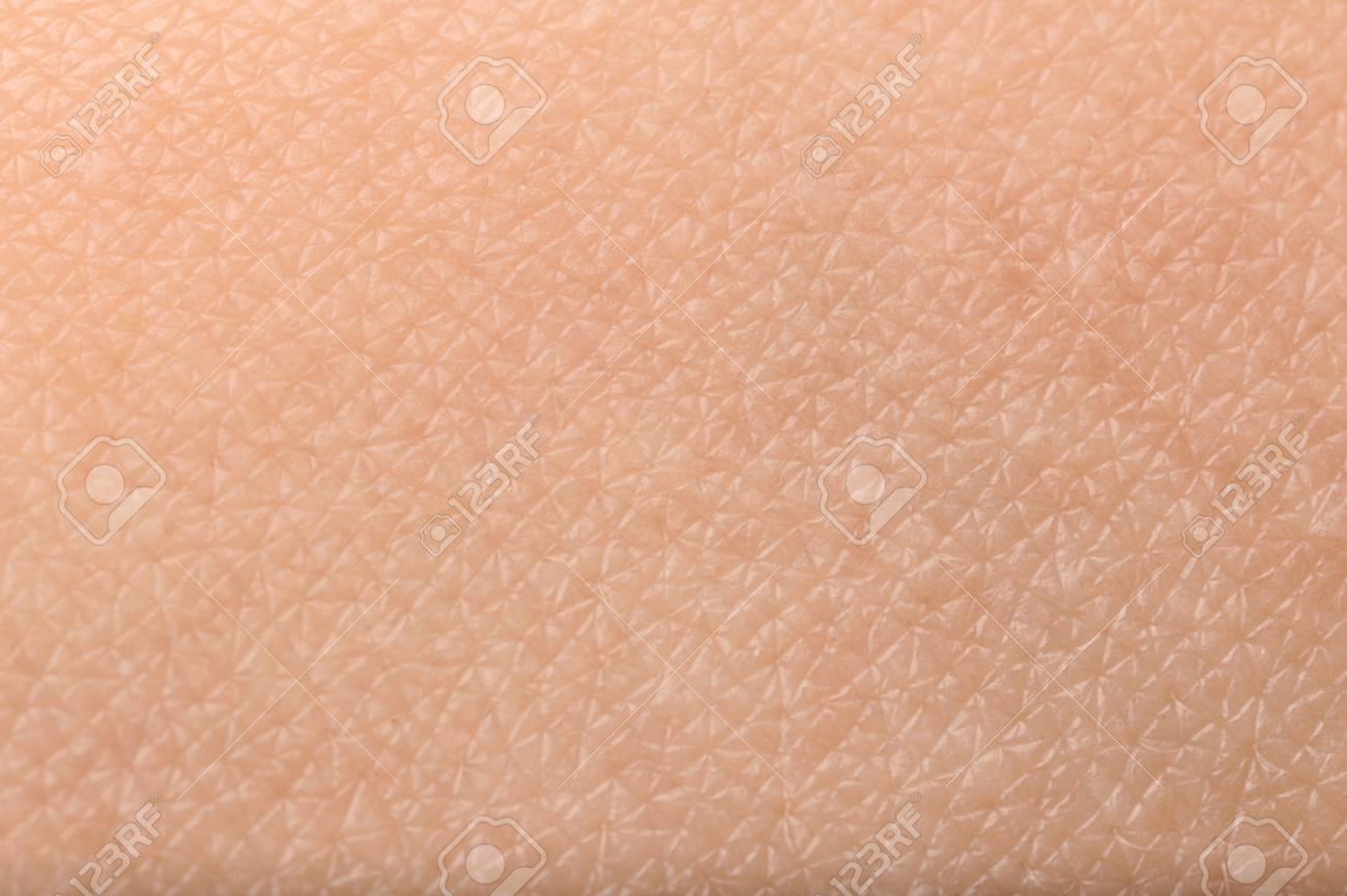 Texture of human skin, closeup - 113267653
