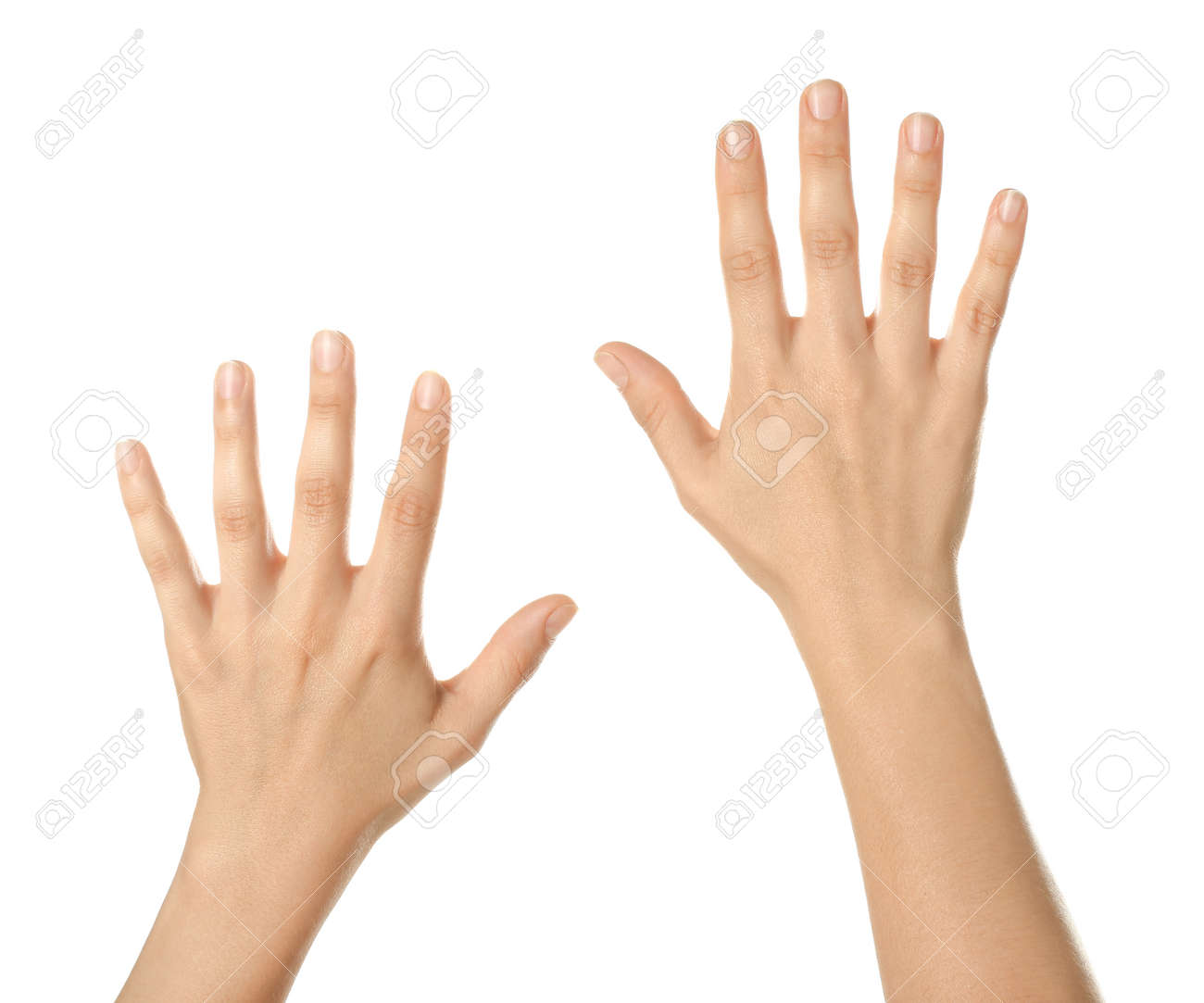 Beautiful female hands on white background - 165375361