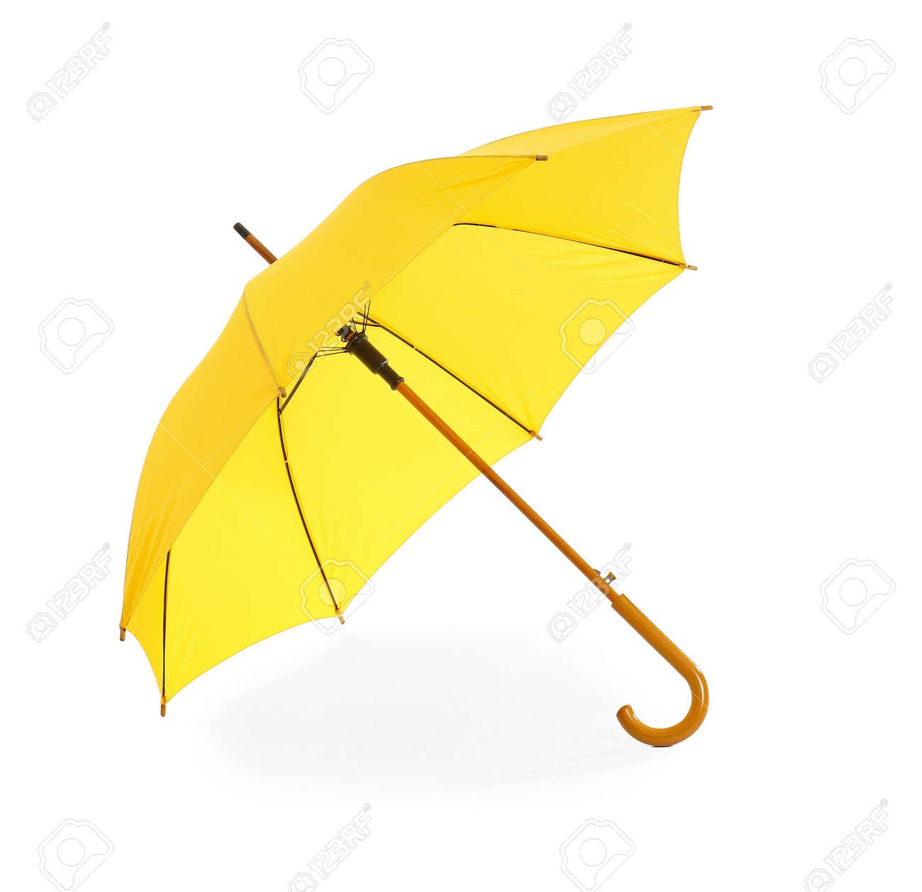 Stylish umbrella on white background - 166666760