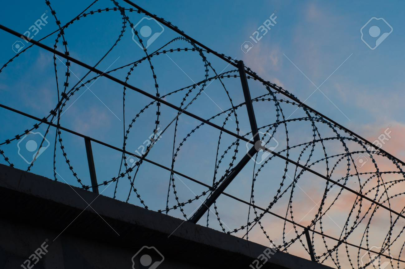 Fence With Barbed Wire Stretched Circles On The Background Of ...