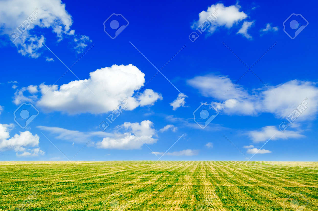The field and white clouds. Stock Photo - 911341