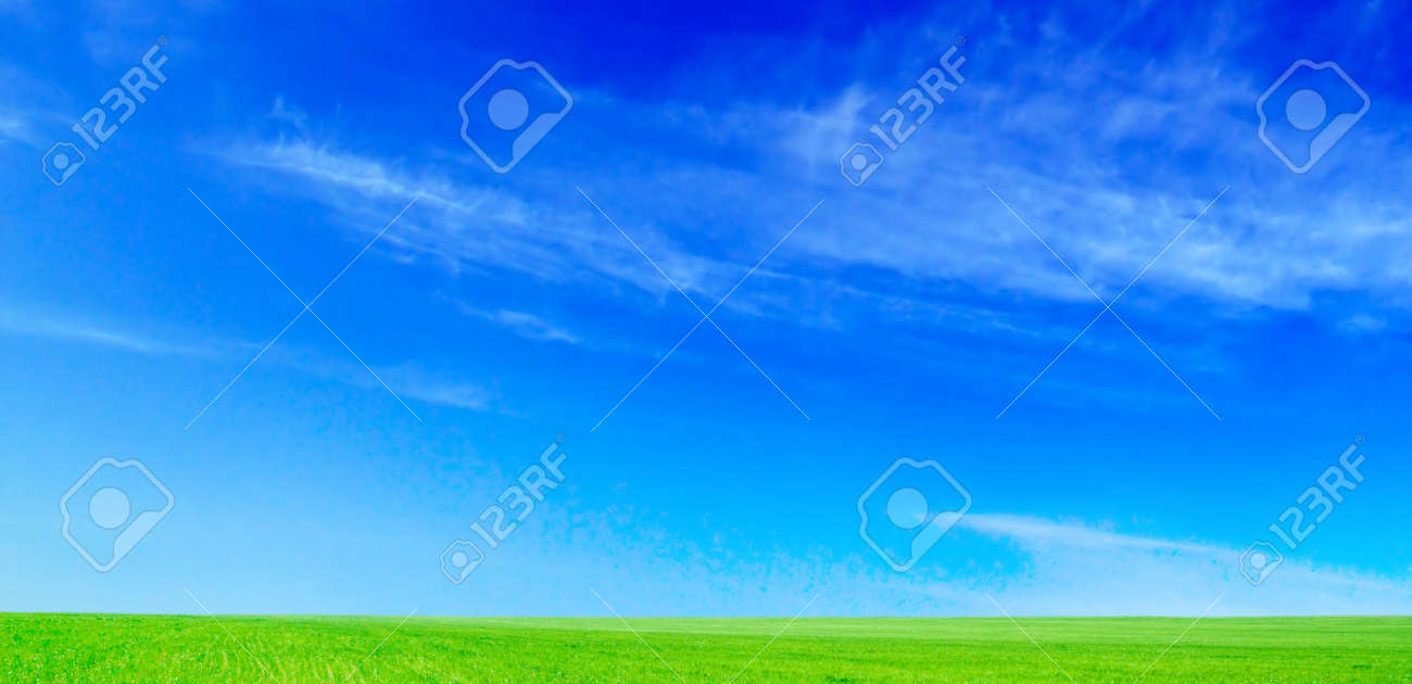 spring field and the blue sky Stock Photo - 2697263