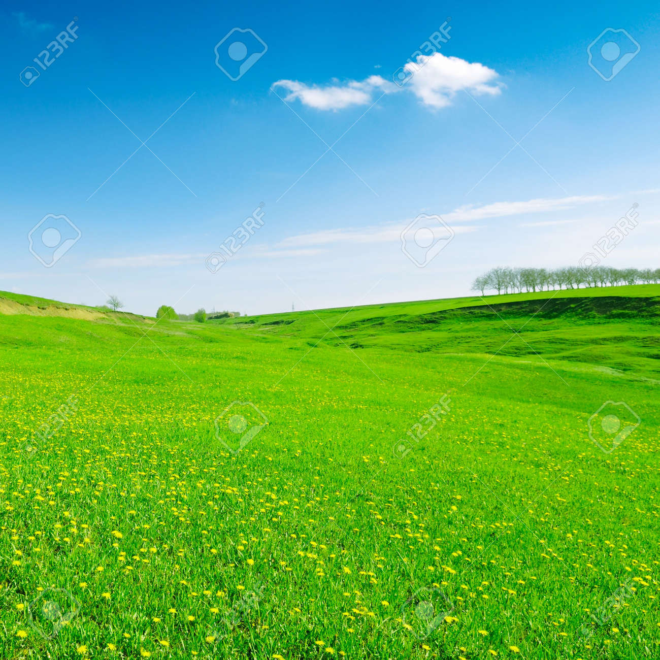 white beautiful clouds and a green field Stock Photo - 2993087