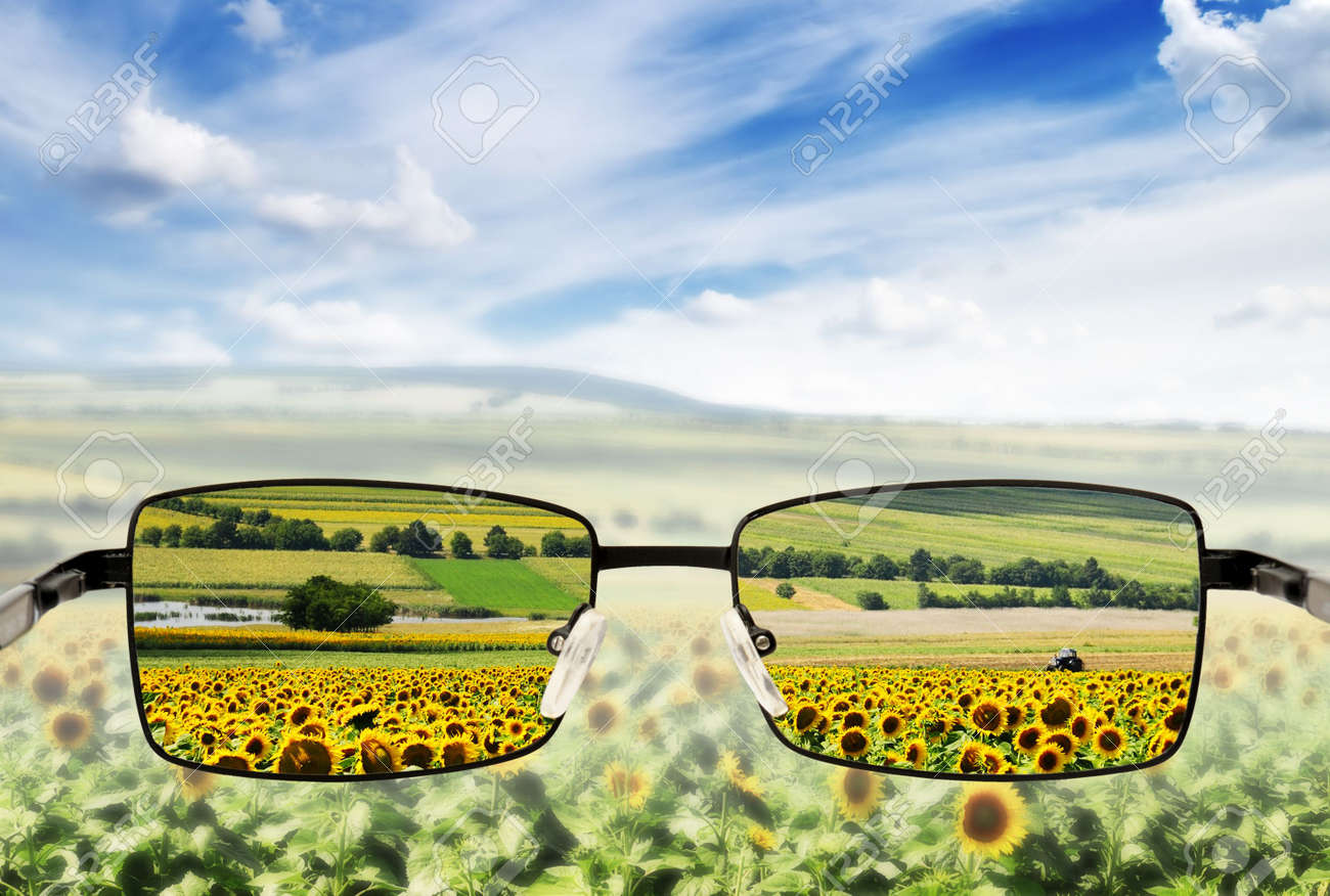 Sunglasses. Concept - sunglasses for poor vision. Stock Photo - 6431362