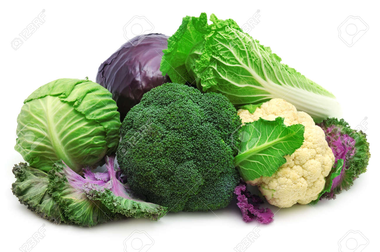 collection cabbages isolated on a white background Stock Photo - 11979769