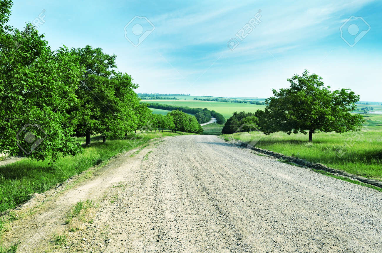country road - 12210672