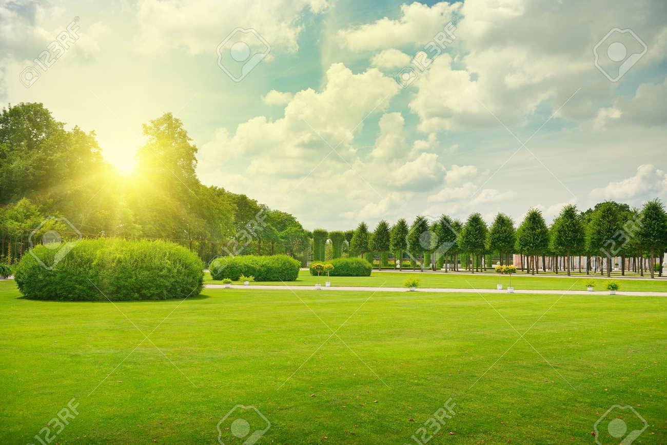 Sunrise in beautiful park - 33019494