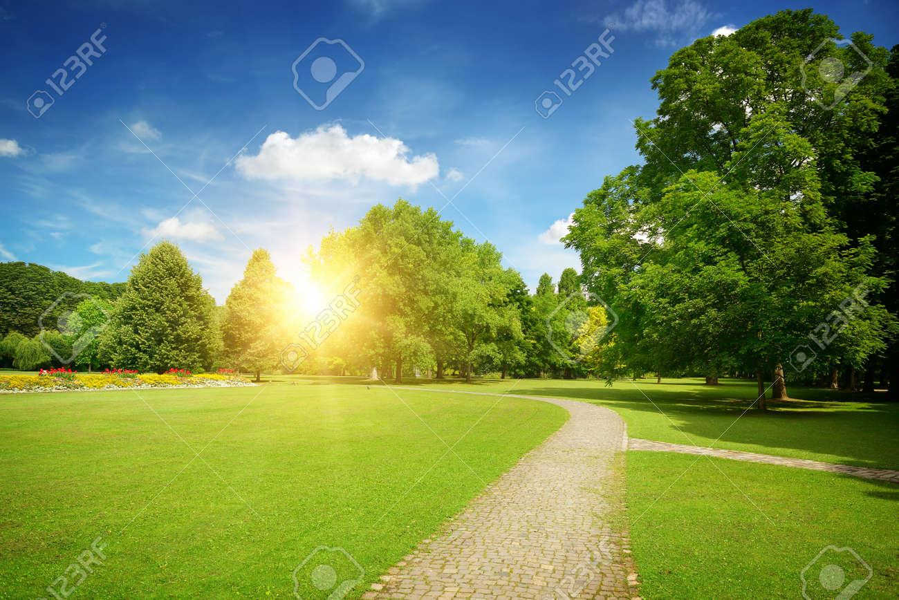 Sunrise in the beautiful park - 38970384