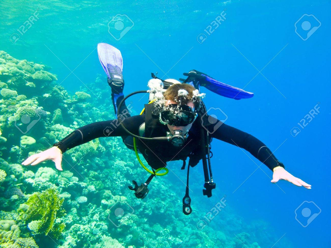 Scuba diver under water in the red sea. - 11312576