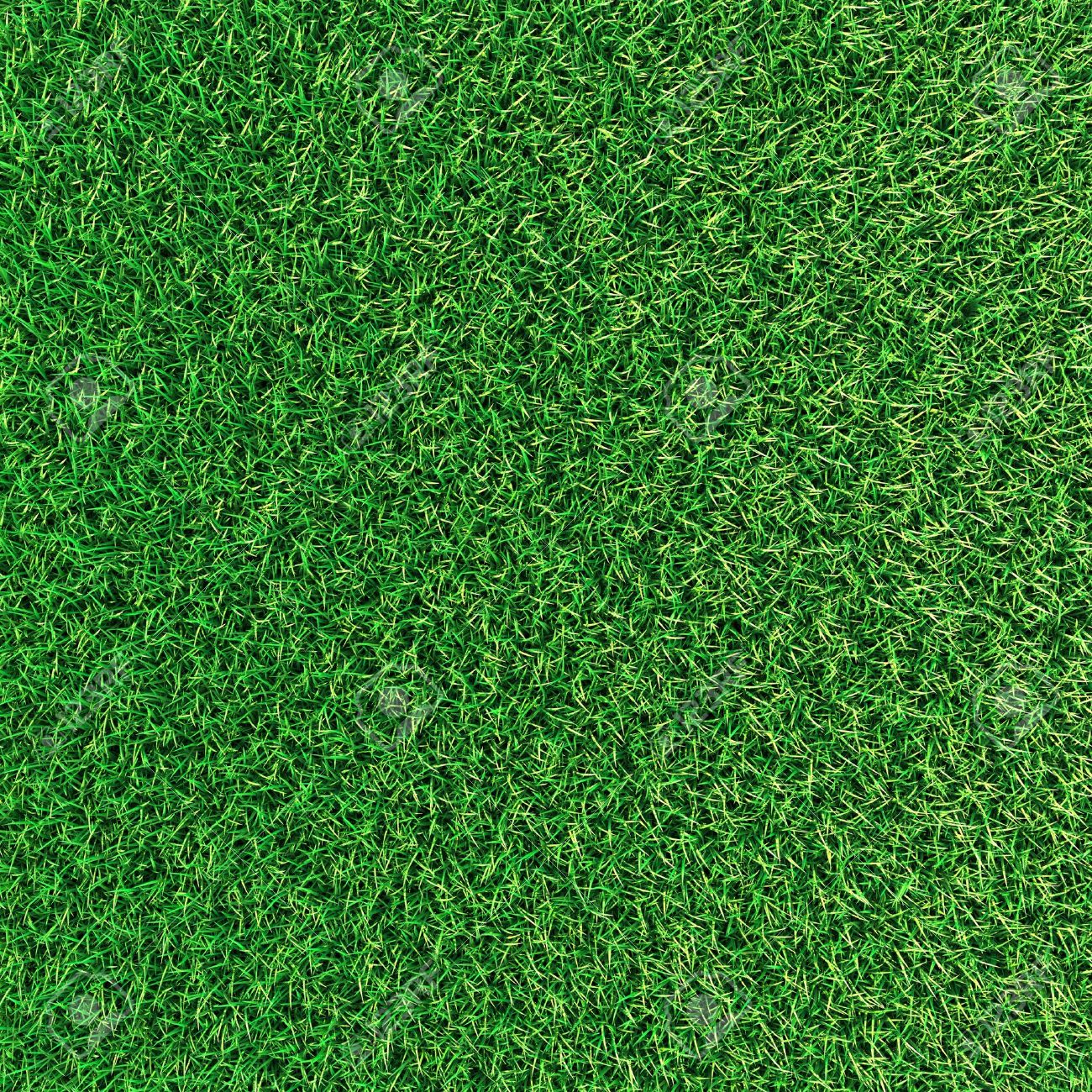 Green grass background texture. Stock Photo - 12076325