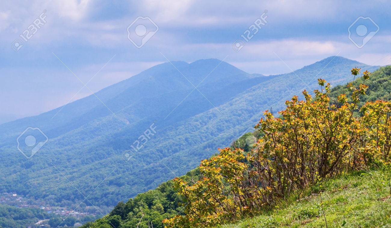 夏の山曇り空と北コーカサスの風...