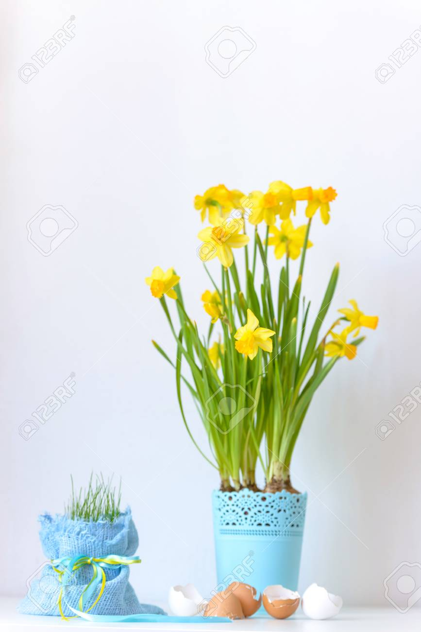 Easter Flowers Narcissus In Flowerpot And Eggs Shell On White