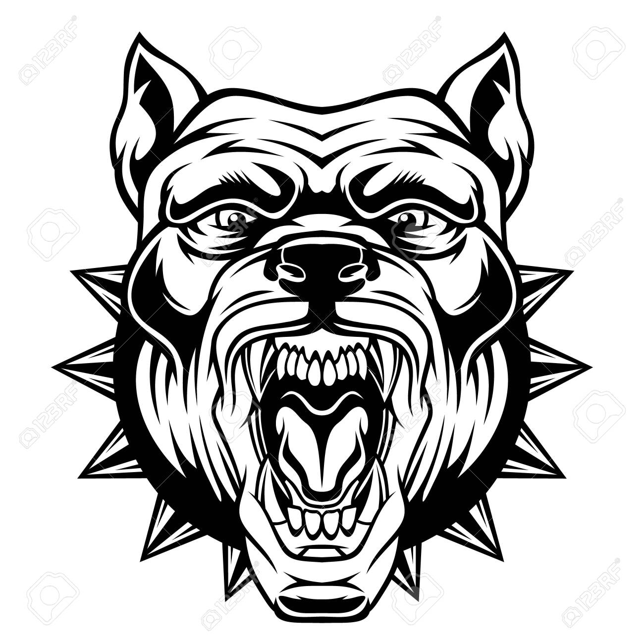 Angry pitbull head. - 129012499