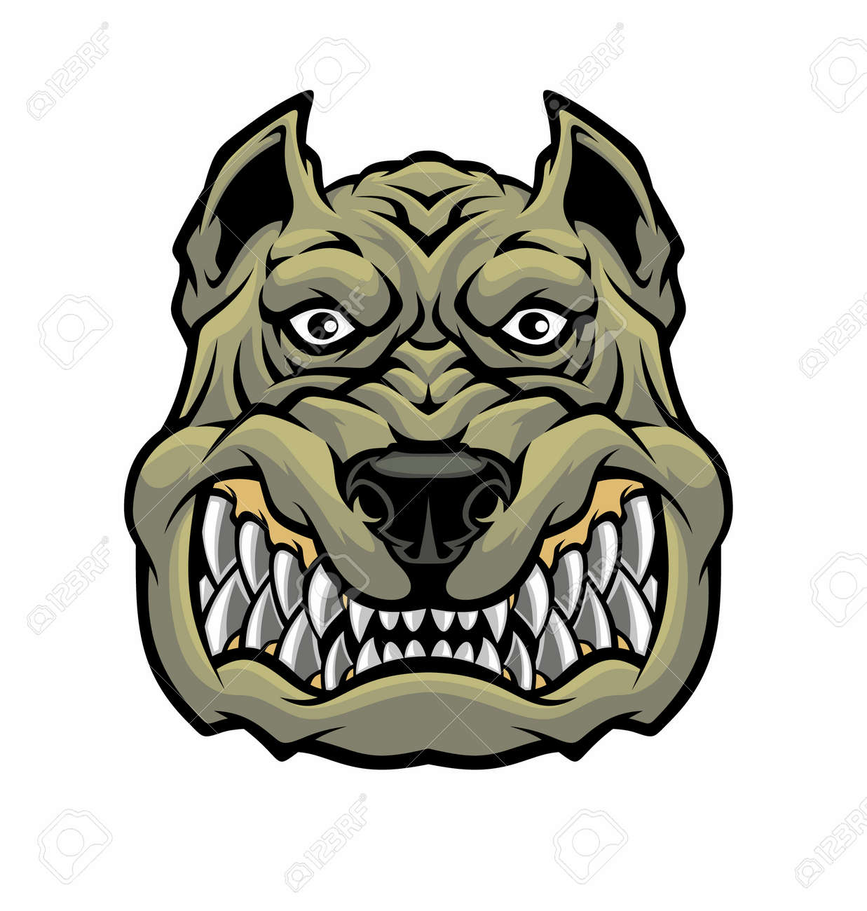 Angry pitbull head. - 167195320