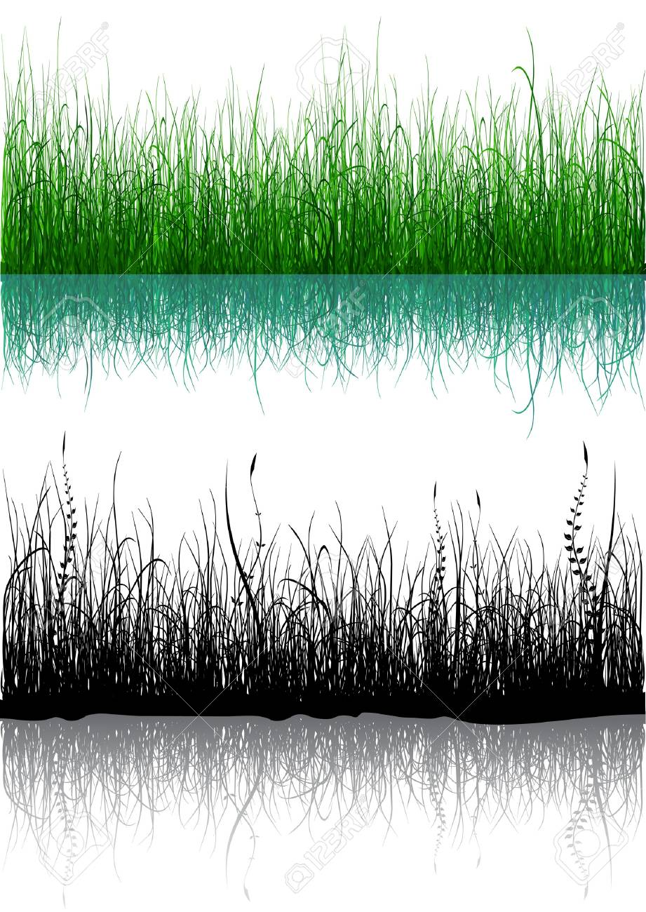 Green and black grass isolated on white Stock Vector - 6178070