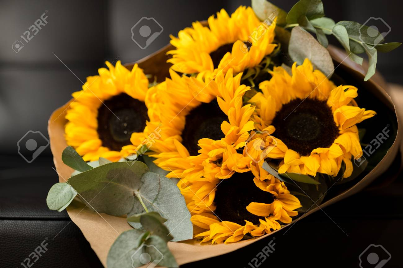 Deluxe Bouquet Of Sunflowers On Dark Background Stock Photo Picture And Royalty Free Image Image 52745315