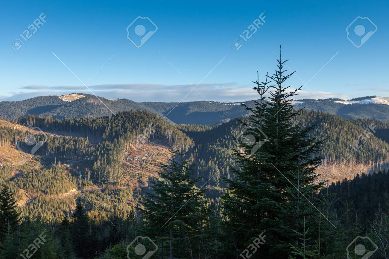 Carpathian mountains in the winter. Stock Photo - 17315260