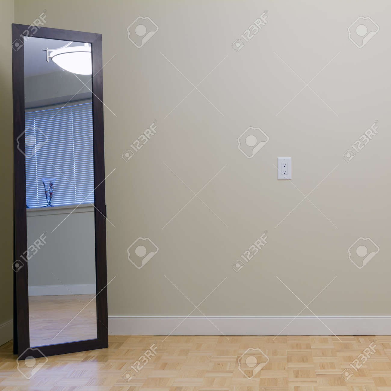 Empty Living Room With Mirror In A New Apartment Stock Photo   15892624