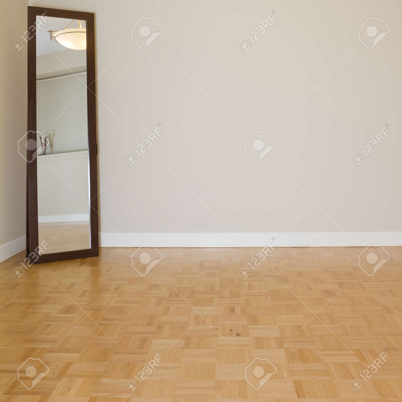 Empty Living Room With Mirror In A New Apartment Stock Photo   16051813