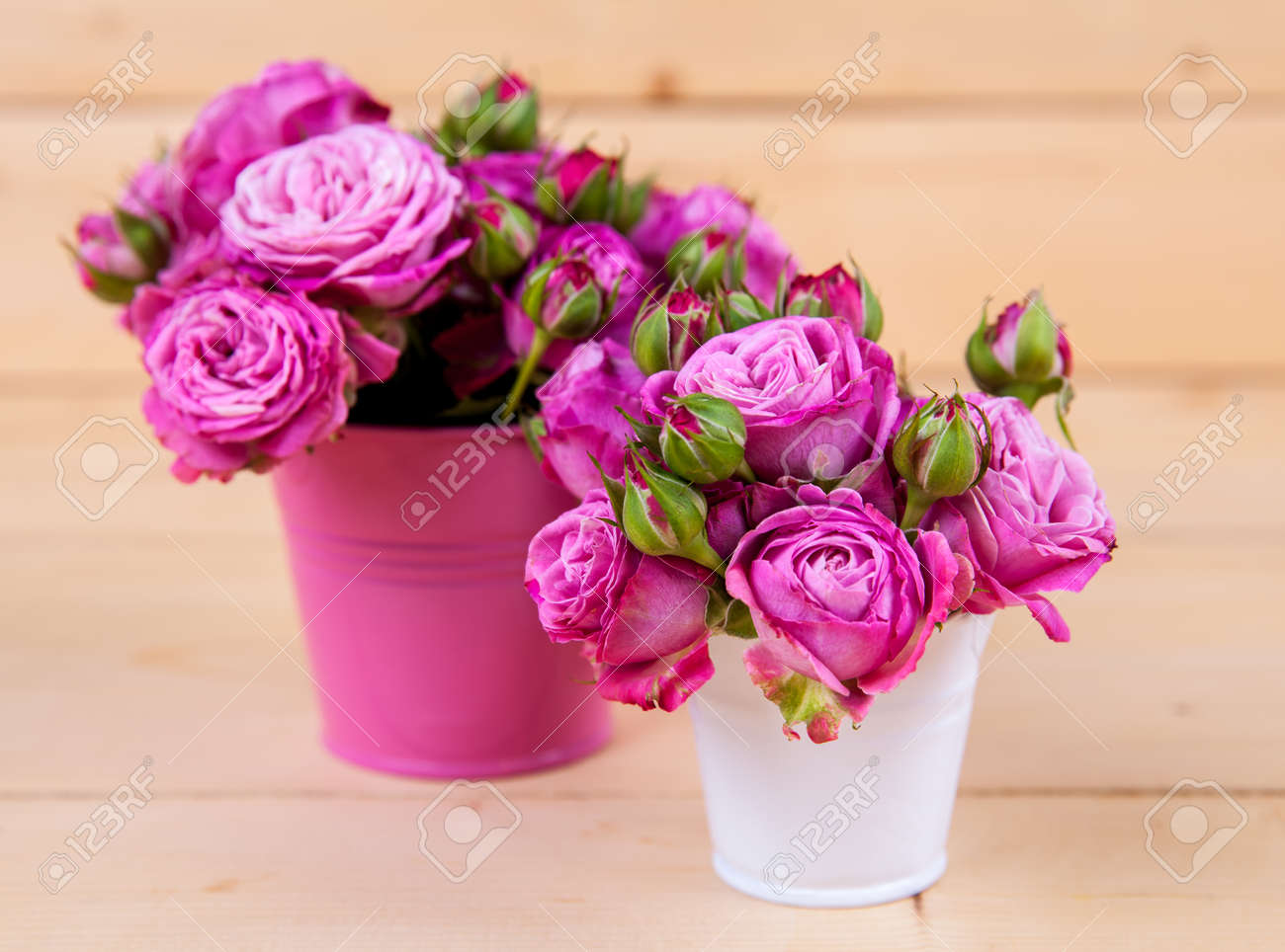 Pink Roses In A Vase On Wooden Background Stock Photo Picture And