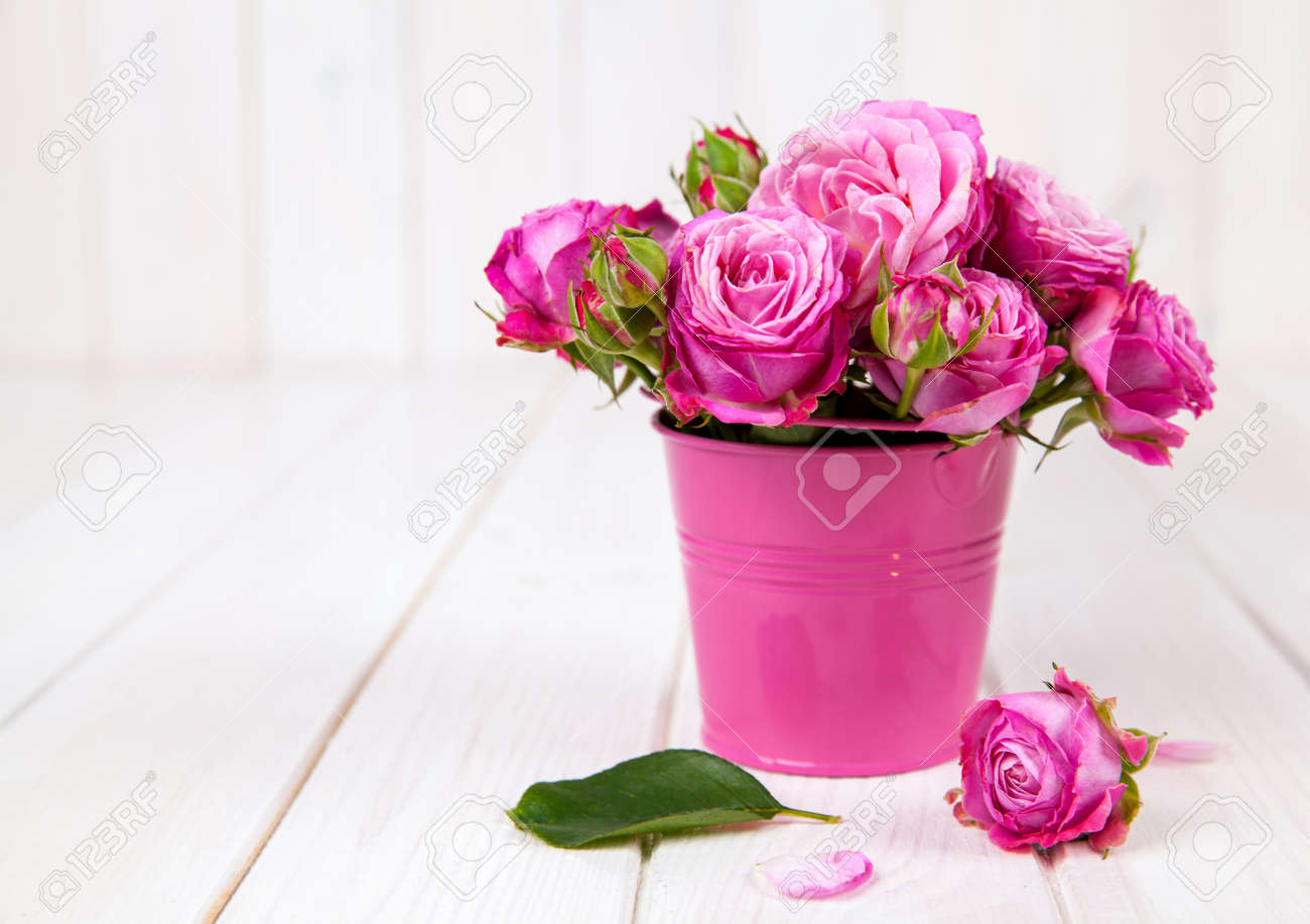 Pink roses in vase on white wooden background flowers stock photo pink roses in vase on white wooden background flowers stock photo 48591499 mightylinksfo