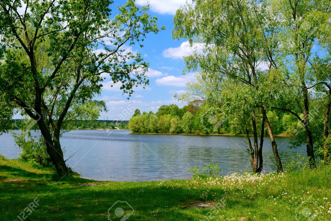 lake and green trees near the water in spring time stock photo