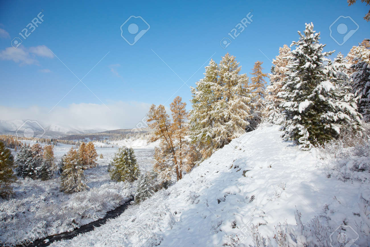 View on Altai mountines and forest under snow Stock Photo - 8400467