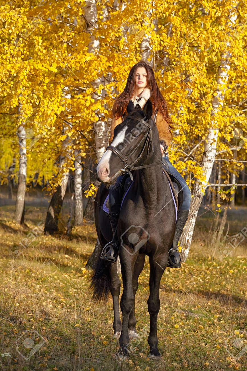 Portrait Of A Pretty Young Woman With A Black Horse Riding Autumn Stock Photo Picture And Royalty Free Image Image 17166190