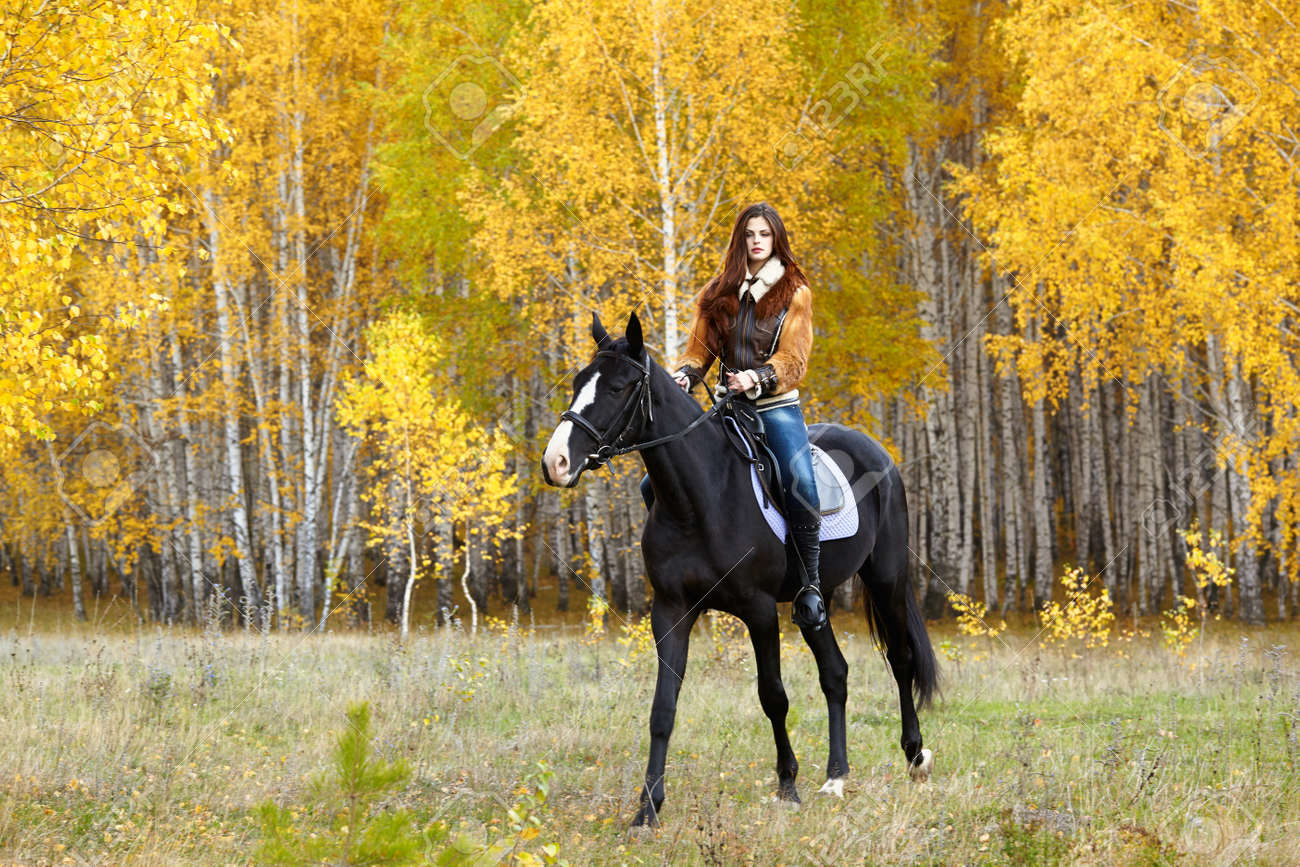 Portrait Of A Pretty Young Woman With A Black Horse Riding Autumn Stock Photo Picture And Royalty Free Image Image 17166191