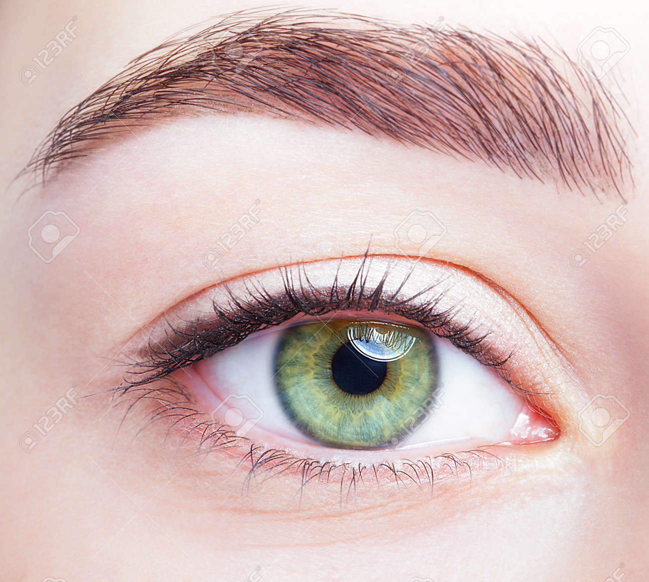 Closeup shot of female green pistachio colour eye with day makeup - 37028659